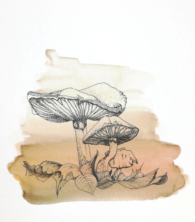 aquarelle et encre de chine